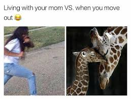 Moving Out Meme - being a teenager memes mutually