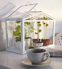 ikea socker indoor miniature greenhouse the green head