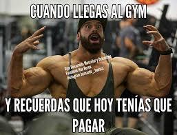 Meme Definicion - ciclos de desarrollo muscular o gym desarrollo muscular y