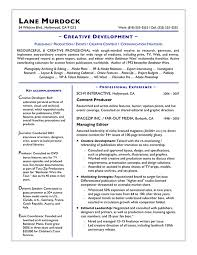 Writing Sample Resume by Download Resume Experts Haadyaooverbayresort Com