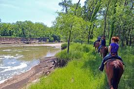 Texas how far can a horse travel in a day images Trail ride pony ride river ranch texas horse park jpg