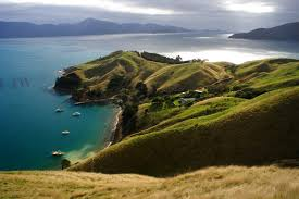 5 magnificent places to celebrate christmas in new zealand