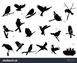 bird silhouettes collection stock vector 89150440 shutterstock