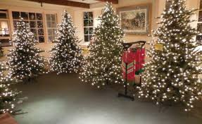 Christmas Decorations Wholesale Manchester by The Christmas Dove Christmas Store Gifts Trees Christmas Shop