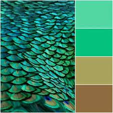 peacock home décor to create elegant feeling house