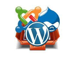 website design erstellen leo web design webdesign schweiz günstige webdesign schweiz