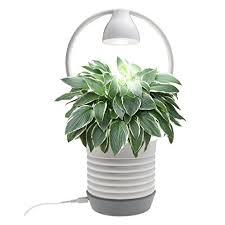amazon com led indoor hydroponics grower kit chee mong garden