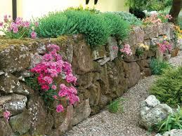 good fences make good neighbors picking materials for boundaries
