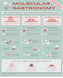 140 best molecular gastronomy images on pinterest molecular