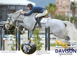 neue schule tranz angled lozenge universal tips advice davison equestrian