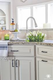Real Solutions Kitchen Organizers 181 Best Keep Your Kitchen Organized Images On Pinterest Kitchen