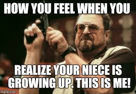 Niece Meme - am i the only one around here meme imgflip