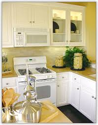 white appliance kitchen ideas best color kitchen cabinets with white appliances home interior