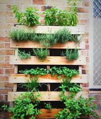 Diy Vertical Pallet Garden - 1440 best vertical herb garden images on pinterest gardens