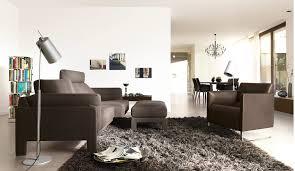 Elegant Rugs For Living Room Wonderful Decoration Brown Living Room Rugs Redoubtable Living