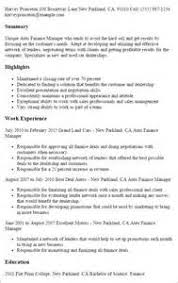 Sample Resume For Finance Manager by Sample Finance Resumes Chief Finance Officer Resume Sample Skill