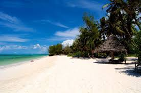 beach resort pongwe tanzania the best beach in zanzibar