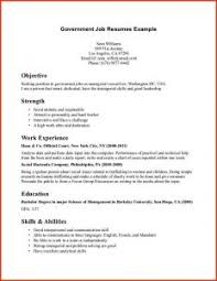 Government Resumes Examples Of Resumes 89 Glamorous I Need A Good Job To Support My