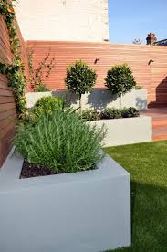 low maintenance landscaping ideas for front of house and garden