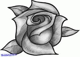 rose flower made by pencil on page drawing of sketch