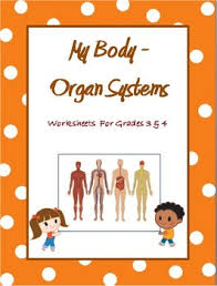 human body organ systems worksheets for grade 3 and 4 by