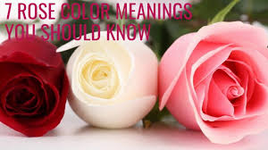 7 rose color meanings you should know youtube