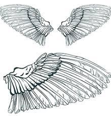 wings royalty free vector image vectorstock