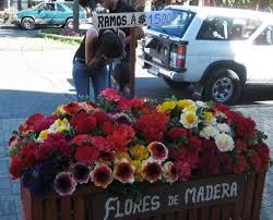 Fake Flowers My Camera My Valentine U0027s Day The Chilean Way The Smith Trip