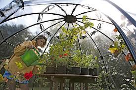 Greenhouses For Backyard Sunbubble Greenhouse Inhabitat U2013 Green Design Innovation