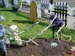 best 25 skeletons ideas on