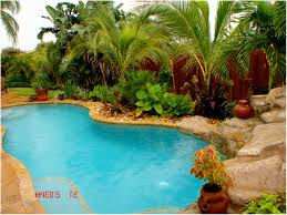Landscaping Ideas For Florida by Backyards Ergonomic Backyard Pool Landscaping Pictures Backyard