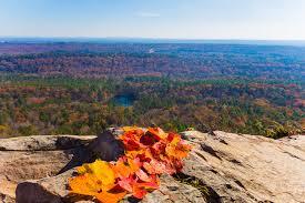Alabama National Parks images Alabama state park picture birmingham jpg