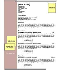 Professional Resume Word Template Resume Templates Microsoft Word Templates