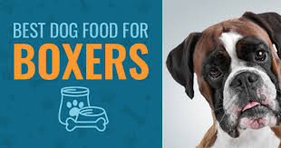 best dog food for boxers 2017 u0027s top 4 animalso