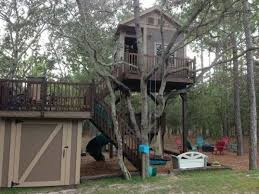I Have Built A Treehouse - 30 diy tree house plans u0026 design ideas for and kids 100 free