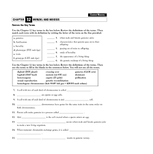 vocabulary worksheet answers free worksheets library download