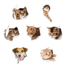 buy pets stickers and get free shipping on aliexpress com