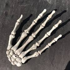 aliexpress com buy top 2pcs 1 pairs plastic skeleton hands