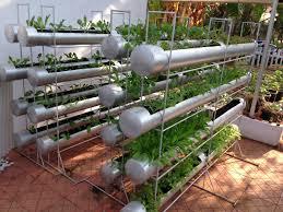 raised garden ideas asian home outdoor decoration