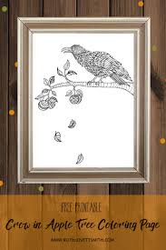 crow in apple tree free coloring page ruth lovettsmith