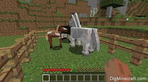 How To Build A Horse Barn In Minecraft How To Breed Horses In Minecraft