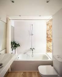 Apartment Bathroom Ideas by Bathroom Surprising Apartment Bathroom Renovation Apartment
