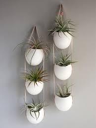 attractive design ideas wall hanging planters delightful