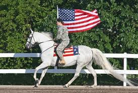 Dodson Flag Mutual Healing For Veterans And Rescue Horses The 1 Resource