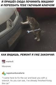 Russian Car Meme - russian cat album on imgur