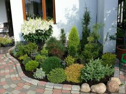 Small Shrubs For Front Yard - best 25 sidewalk landscaping ideas on pinterest driveway