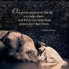 wedding quotes dalai lama positive quotes dalai lama quotes boxes you number one