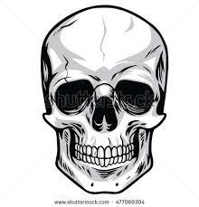 vector skulls illustrations stock vector hd royalty free 477069304