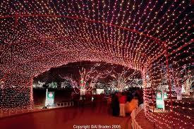 trail of lights zilker park austin texas al braden photography