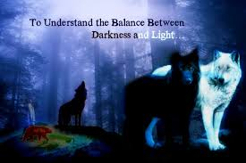 Light And Dark Quotes To Understand The Balance Between Darkness And Light U2026 U2013 Bear